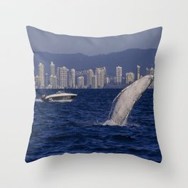 Humpback Whale Calf Breaching Off Surfers Paradise Throw Pillow