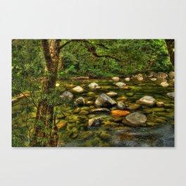 Majestic Mossman Gorge Canvas Print
