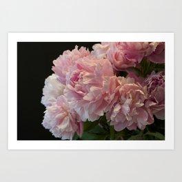 Pink Peony Passion Art Print