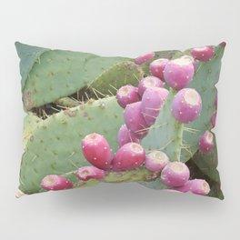 Desert Fruit Pillow Sham
