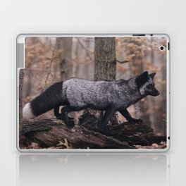 Silver Fox Laptop & iPad Skin