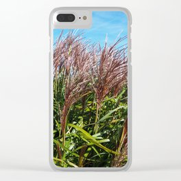 Chinese silver grass blowing in the breeze Clear iPhone Case