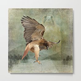 Feathered Fury Above Metal Print