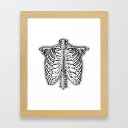 Vintage Skeleton Framed Art Print