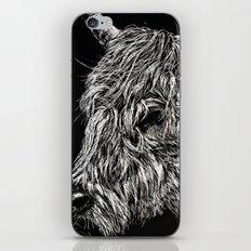 West Highland Cattle Scratch Art, High Park Zoo iPhone & iPod Skin