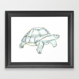 Tortoise in greens and blues Framed Art Print