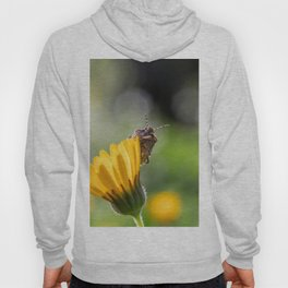 Funny insect on yellow flower Hoody