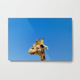 Hello Giraffe Metal Print