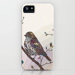 Kaleidoscape iPhone Case