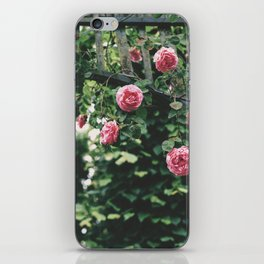 Pink Flowers iPhone Skin