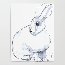 Arctic Hare Poster