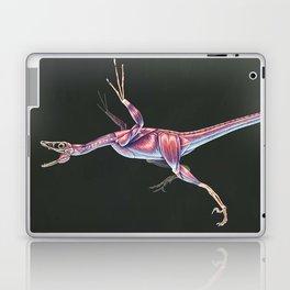 Microraptor Gui Muscle tudy (No Labels) Laptop & iPad Skin