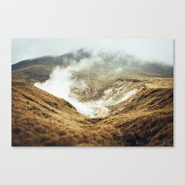 the journey down Canvas Print