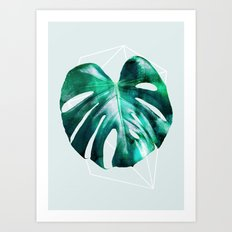 Monstera 2 Geometry Art Print