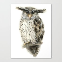 Forest Eagle Owl Canvas Print