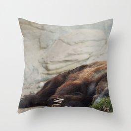 Grizzly Bear, San Antonio Zoo Throw Pillow