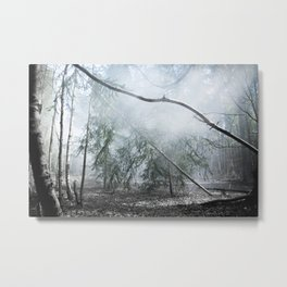 Misty birch Metal Print
