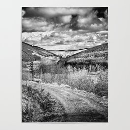 Woodland Valley Poster