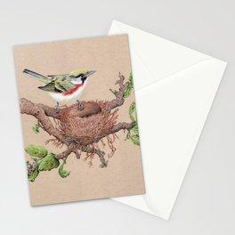 Chestnut Sided Warbler in Nest Stationery Cards