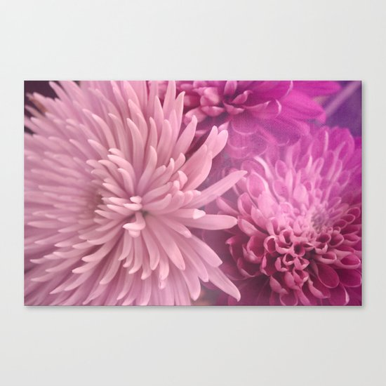 Pink Hour Canvas Print