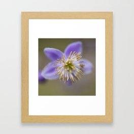 Purple One Framed Art Print