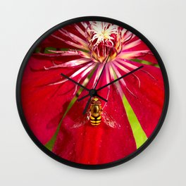 Flowers & bugs RED PASSION FLOWER & HOVERFLY Wall Clock