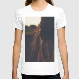 Horse photography, high quality, nature landscape fine art print T-shirt