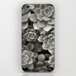 Succulent iPhone Skin