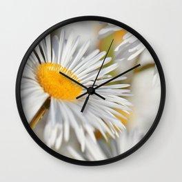 Marquerite white yelow 02 Wall Clock