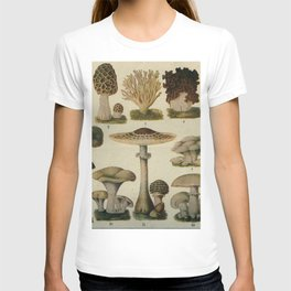 Edible Mushrooms Chart T-shirt