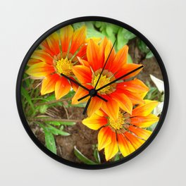Three Bright Colored Gazania Flowers and Garden Wall Clock