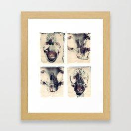 X Ray Terrestrial No. 7 Framed Art Print