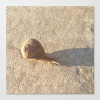 lee pace Canvas Prints featuring Snail's Pace by Geni