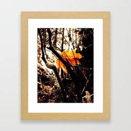 Tree Star Framed Art Print