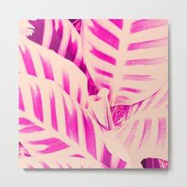 Pink tropical foliage Metal Print