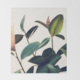 Ficus Elastica #8 Throw Blanket