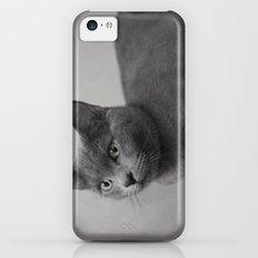 Cat iPhone 5c Slim Case