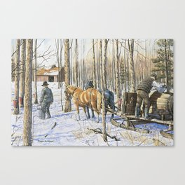 Collecting Maple Syrup Canvas Print