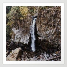 Drift Creek Falls Art Print
