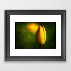 Tulip Hallucinations Framed Art Print
