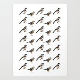 Tiny Birds Art Print