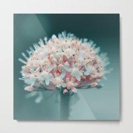 Tender flowers 5 Metal Print