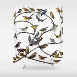 Warblers of New England Shower Curtain
