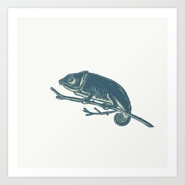 Chameleon On Branch Scratchboard Art Print