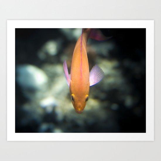 O-Fish-Al Art Print