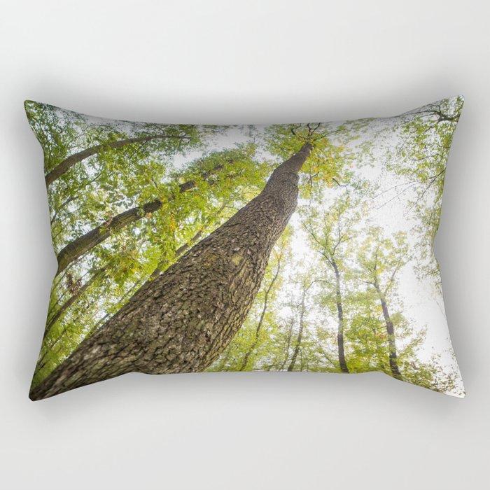 Bottom View Into The Treetops Rectangular Pillow
