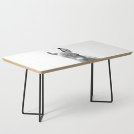 Black and White Baby Donkey Coffee Table