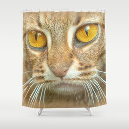 AMBER-EYED BEAUTY Shower Curtain
