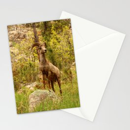 His Teritory Stationery Cards