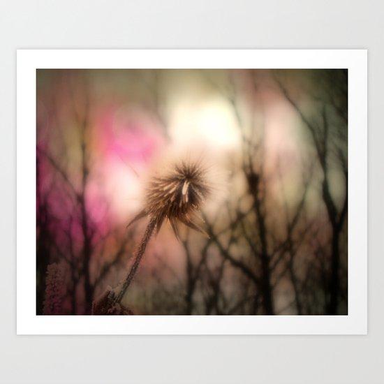 Shimmering Pink Art Print